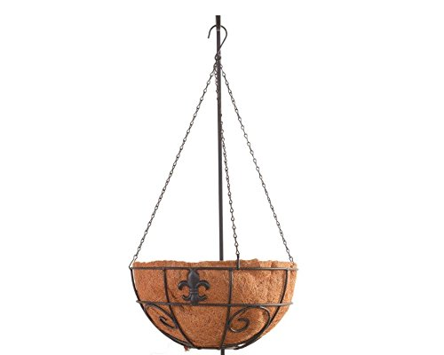 American Garden Works LAHB Lafayette Collection Fleur De Lys Hanging Basket, 14