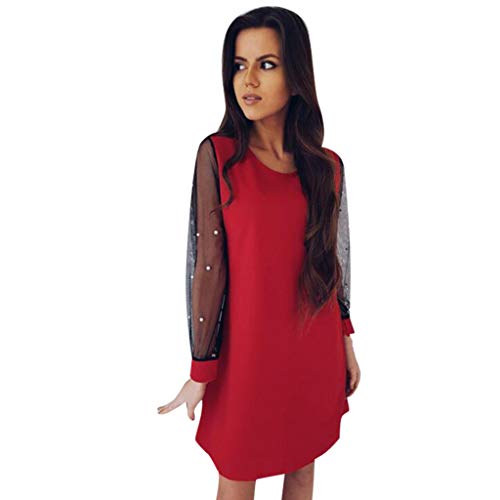 Summer Dresses for Women Tunic Dress with Embroidered Floral Mesh Bishop Sleeve ()