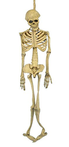 Forum Novelties Halloween Skeleton Full Body Latex Skeleton, 5-Feet, Bone ()