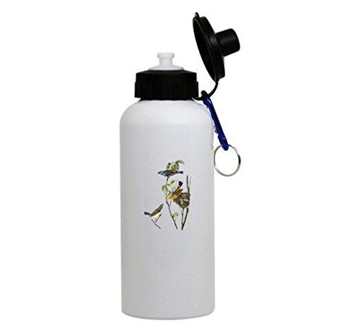 Grosbeak Audubon Bird - 7