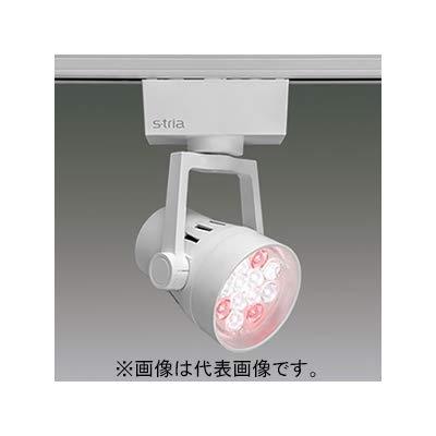 LEDスポットライト 食品売場用タイプ 野菜青果用 LED12灯 非調光タイプ 配光角25° ホワイト   B07S1SH8T4
