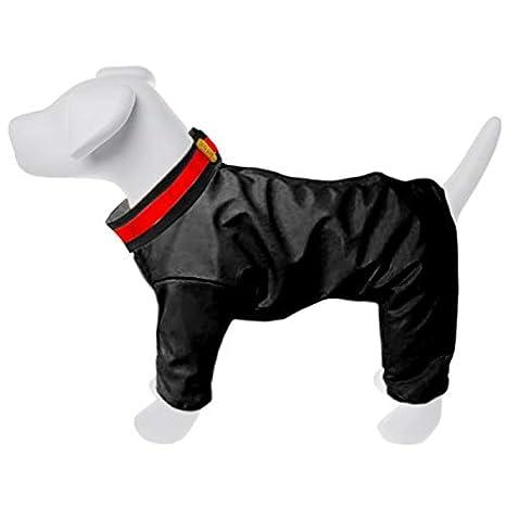 Dog Line – Chándal acolchada Aosta para perros: Amazon.es ...