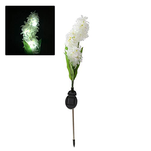 Hyacinth Outdoor Lights in US - 6