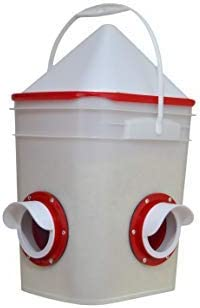 RentAcoop Automatic hen feeders