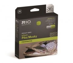 RIO Products Fly Line Intouch Pike/Musky Wf10F/I, Gray-Yellow (Best Pike Fly Line)