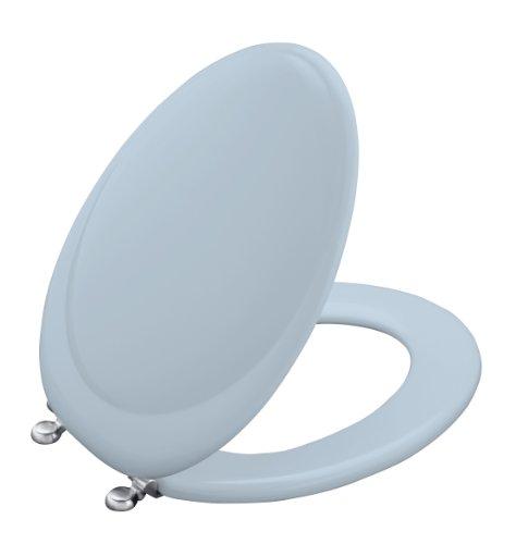 Toilet Seat Brushed Chrome Hinges - 1
