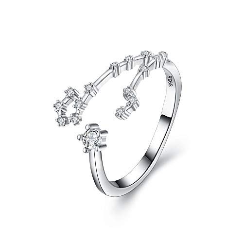 "BriLove 925 Sterling Silver CZ Statement Ring for Women -""Pisces"" Horoscope Zodiac 12 Constellation Astrology Adjustable Ring"
