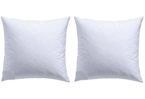 2 X Feather pillow 50x50cm Pillow filler, Inner pillow, pillow 600 g Filling Pillow insert /Feather Pillow/Sofa cushion 2 SET german production