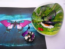 Page-up Document Holder, Liquid, Pink Swallowtail Butterfly by Page-Up