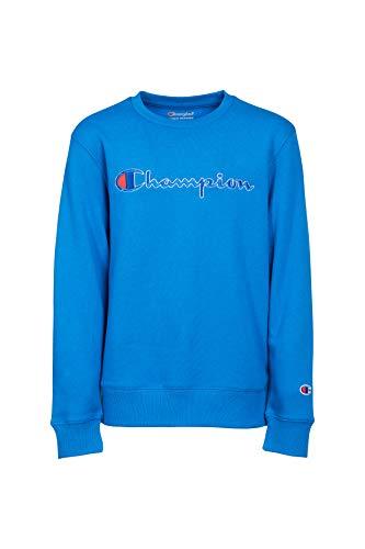 - Champion Unisex Heritage Fleece Script Pullover Sweatshirt (Large)