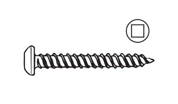 AP Productos 012-PSQ500 W 8 X 1/4 Tornillo de ranura cuadrado de cabeza blanca - Paquete de 500 - - Amazon.com