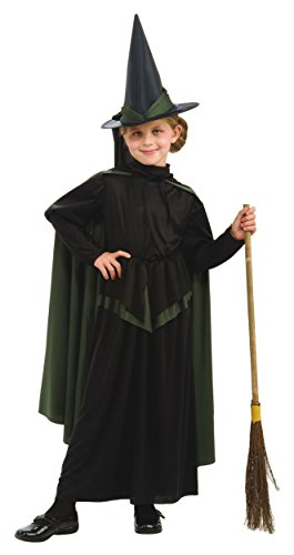 Wicked Witch of the West Costume - Small (Wicked Witch Of The West Broom)