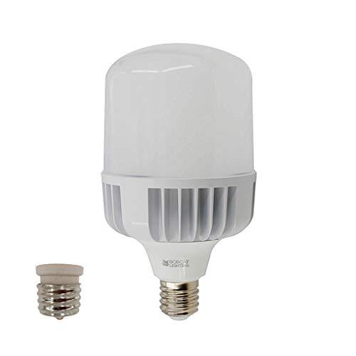 Metal Halide Bulb In Hps Fixture: Bobcat Lighting 60 Watt (300 Watt Replacement) LED High