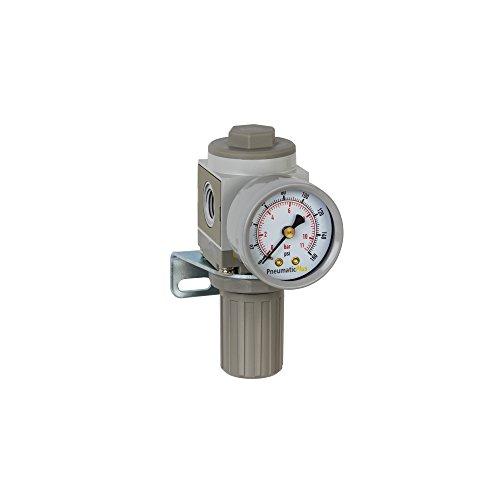 PneumaticPlus SAR2000M-N02BG Miniature Air Pressure Regulator 1/4'' NPT - Gauge, Bracket by PneumaticPlus