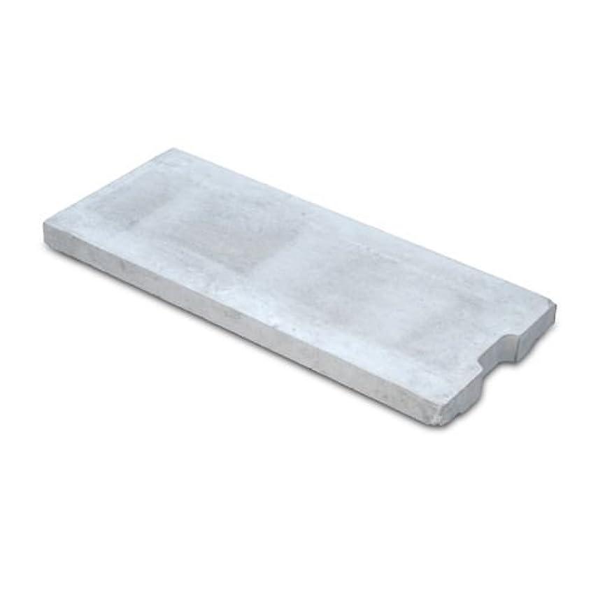 オーバーラン冗談で速度カラークリート#810(一体型無機系硬質床仕上げ材)