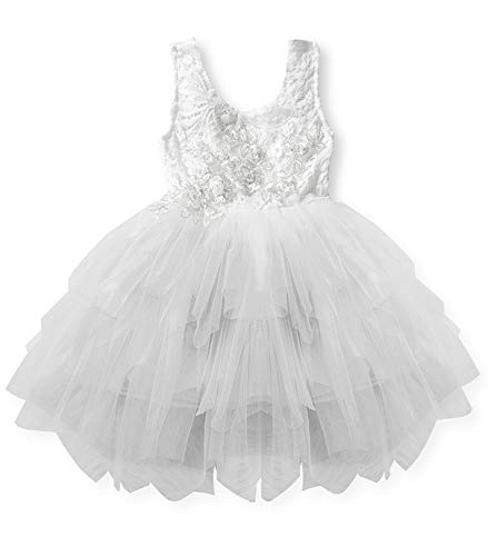 GSVIBK Baby Girls Tutu Dress Toddler Tulle Tutu Dress Infant Tulle Dresses Princess Party Dress 360 White 4Y