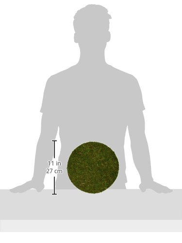 26295 4 3 units Fresh Green Moss Soil Toppers SuperMoss