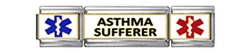 - ASTHMA SUFFERER MEDICAL ALERT ID Italian Charm 9mm 1 x MT050 Triple Charm SET