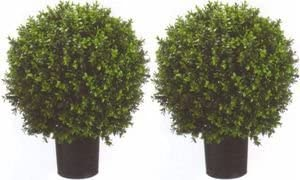 Topiary bushes artificial plants