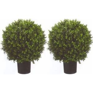 Two 2 Foot Outdoor Artificial Boxwood Ball Topiary Bushes Potted Uv Rated Plants 18 inches Wide 12