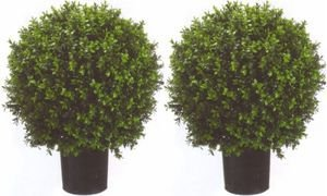 Two 2 Foot Outdoor Artificial Boxwood Ball Topiary Bushes Potted Uv Rated Plants 18 inches Wide by Silk Tree Warehouse