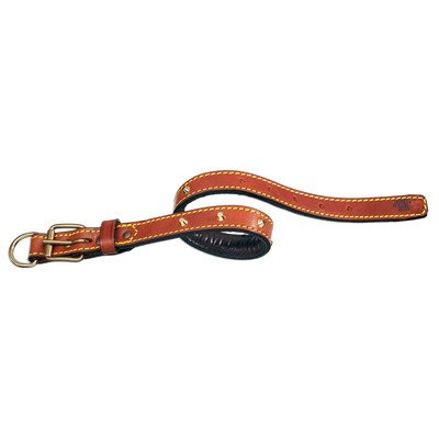"""Classic Padded Leather Dog Collar with Studs Size: 1"""" W x 20 1/2"""" L, Color: Brown"""