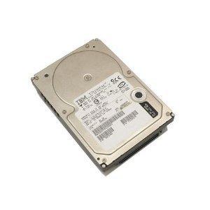 IBM 40K1045 40K1045 IBM 73 GB 10 000 rpm simple-swap SAS hard drive (Renewed)