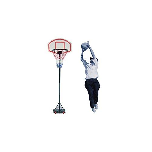 Transportabler Outdoor Basketballständer mit Basketballkorb höhenverstellbar 165-205 cm