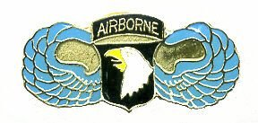 Wholesale Lot of 12 101st Airborne Army Wings Hat Pins Tg044 - Ppm 12 Colour