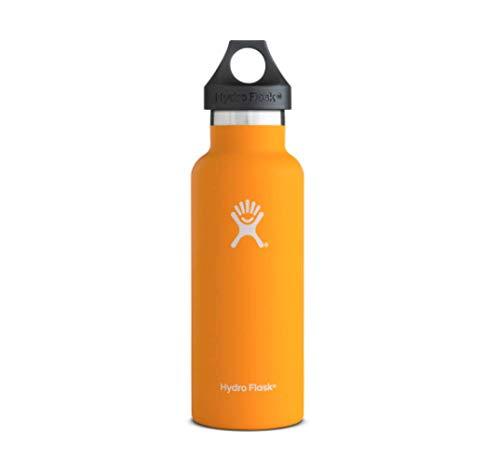HydroFlask Hydro Flask 21oz Standard Mouth Bottle