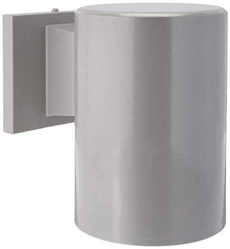 Sea Gull Lighting 8313801-753 Outdoor-Cylinders One-Light Outdoor Wall Lantern, Painted Brushed - Bullet Ceiling