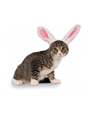 31rUX00VbYL - Rubies Costume Company Bunny Ears for Your Pet