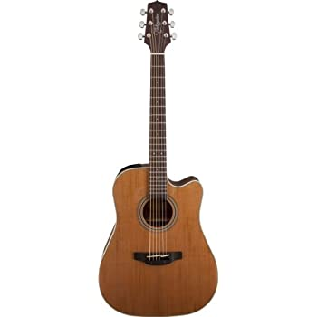 Takamine GD20CE-NS Dreadnought Cutaway Acoustic-Electric Guitar