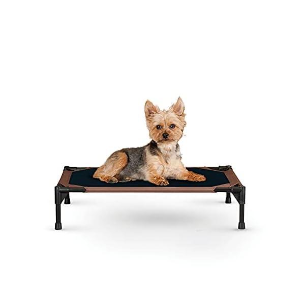 31rV8QIf3NS KH 771615 Original Pet Cot - erhöhtes Haustierbett für Hunde und Katzen - Mittel, M