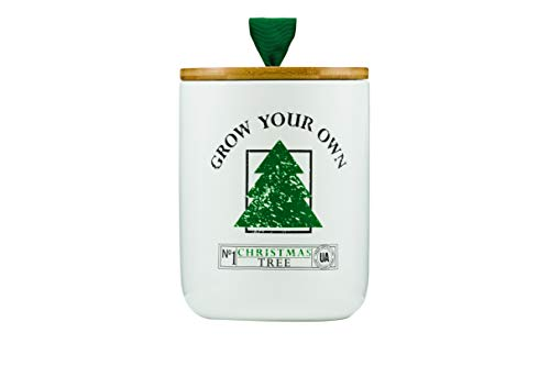 The Urban Agriculture Co. | Grow Your Own Christmas Tree | Ceramic Pot Grow Kit