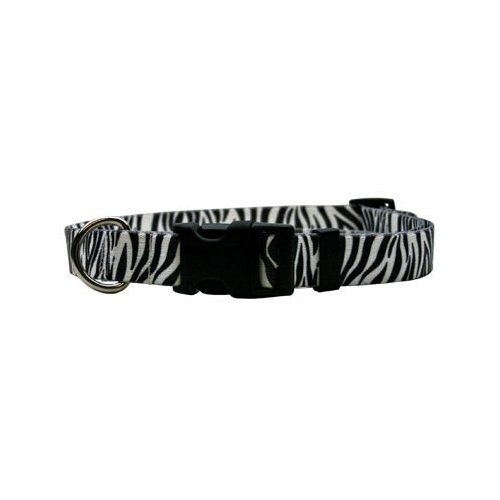 Xs Zebra Black Dog Collar Size Cat 8  to 12  Long Made in The USA