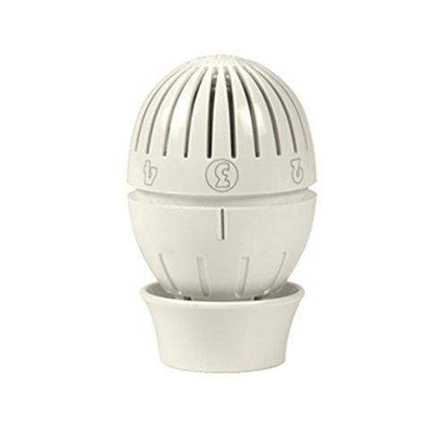 Giacomini r470 - Cabezal a liquido termostatico r470: Amazon.es: Bricolaje y herramientas