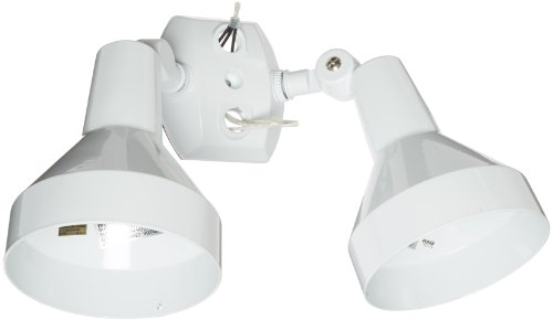 RAB Lighting H2W Bell Shaped Dual Floodlight Kit, PAR38 Type, Aluminum, 300W Power, White Review