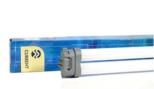 Daylight Power Compact Lamp Square Pin 10,000k 96W