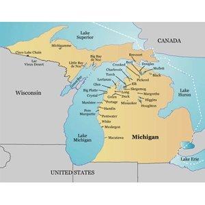 Garmin LakeMaster Michigan (microSD(TM)/SD(TM) card )