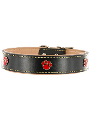 "Kakadu Pet Paw Print Leather Dog Collar, 1"" x 21 1/2"", Black"