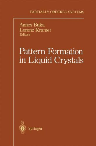 Pattern Formation in Liquid Crystals (Partially Ordered Systems)