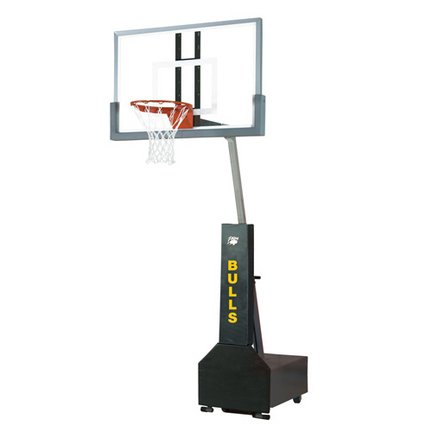 Bison Portable Basketball Hoop, Club Court - 36in x 54in