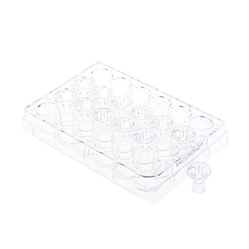 Permeable Cell Culture Inserts, Packed in 24 Well Plate, Hanging, PET, 8.0µm, ()