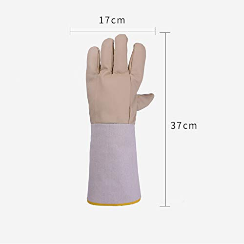 SYDDP Welding Gloves Welders Gloves Cow Split Leather Factory Gardening Welding Wood Stove Work Gloves Heat Resistant Barbecue Gloves (Size : 5 Pairs) by SYDDP (Image #1)