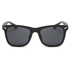 My.Monkey Retro Classic Wayfarer Sunglasses With Colored Lens Uv 400 Driving Sunglasses