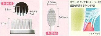 Japan Health and Beauty - GC GC Rushero P-20 Pisera toothbrush set of 5 S softer *AF27*