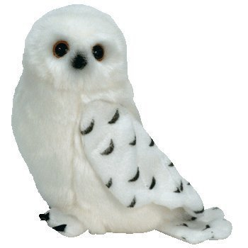 d66c64253ff TY Beanie Baby - KNOWLEDGE the Snowy Owl (Borders Exclusive) by Ty   Amazon.co.uk  Toys   Games