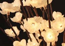The Light Garden 184110 White Plum Tree Flower with 60 Lights