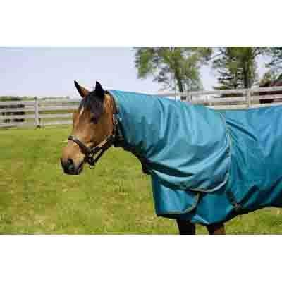 (Hug Abrazo Turnout Blankets Neck Cover)